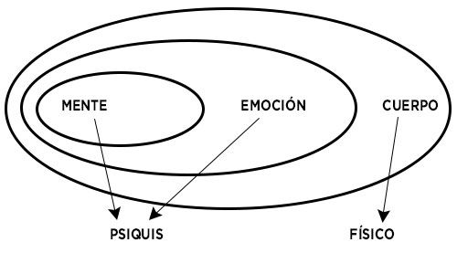 podología holistica